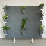 ścianki biurowe kwiaty doniczki